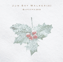 白いクリスマス 2018/JUN SKY WALKER(S)