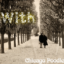 with/Chicago Poodle