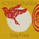 Stay Free/稲葉浩志