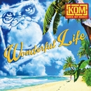 Wonderful Life/KNOCK OUT MONKEY