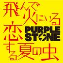 飛んで火にいる恋する夏の虫【C-type】/Purple Stone