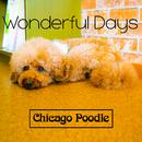 Wonderful Days/Chicago Poodle