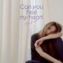 Can you feel my heart/倉木麻衣