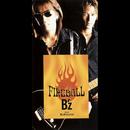 FIREBALL/B'z