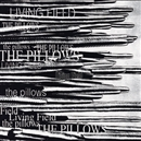 LIVING FIELD/the pillows 音...
