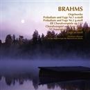 ブラームス:オルガン曲集/クリストフ・アルブレヒト<オルガン>