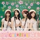 桜色/COLORFUL(カラフル)