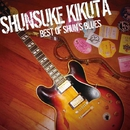 BEST OF SHUN'S BLUES/菊田俊介