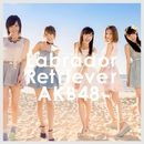 ラブラドール・レトリバー Type A/AKB48