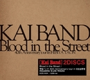 Blood in the Street / 甲斐バンド 40th Anniversary tour in 日比谷野音/甲斐バンド