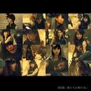 僕たちは戦わない<Type D>/AKB48