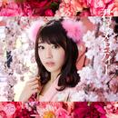 君はメロディー<Type C>/AKB48