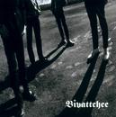 青春の炎/BIVATTCHEE