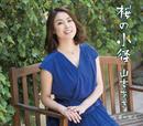 桜の小径/山本あき