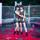 Pinky! Pinky! 通常盤/LADYBABY