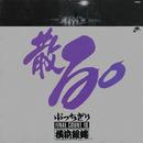 ぶっちぎりFINAL COUNT10 散る。/T.C.R.横浜銀蠅R.S.