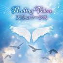 ヒーリング・ヴォイス 天使のコーラス ~天上のハーモニーを聞きながら過ごす、ゆったり至福の時間~/V.A.