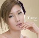 Yucca/Yucca