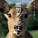 「鹿男あをによし」オリジナル・サウンドトラック/佐橋 俊彦