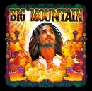 BEST GROOVE/BIG MOUNTAIN