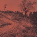 きのうの思い出に別れを告げるんだもの   <エレック/URC復刻プロジェクト2009>/ザ・ディランII