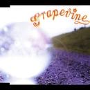 ナツノヒカリ/GRAPEVINE