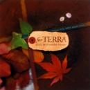 for TERRA/松尾泰伸