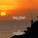 "Virtual Trip NATURE'S ECSTASY ""BALI HIGH"" Remasterd/Virtual Trip"