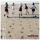 走れ、走れ【初回盤A】/ベイビーレイズJAPAN