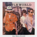 LITTLE WORLD/ALL CITY STEPPERS