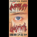 ハートブレイク/藤井フミヤ