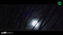 Full Moon/Dreamcatcher