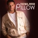 Pillow/Chris Newland