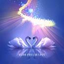 FALL IN LOVE/W.C.D.A.