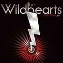 CHUTZPAH! JNR./THE WiLDHEARTS