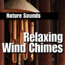 Relaxing Wind Chimes/Nature Sounds