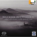 ブルックナー・イン・カテドラル ― 天上の音楽 ―/チェコ・ホルン・コーラス , ラデク・バボラーク & アレシュ・バールタ