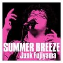SUMMER BREEZE/ジャンク フジヤマ