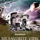 BRAINWASH/MY FAVORITE VIEW