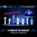 A Tribute to Shaggy [Karaoke Version]/Karaoke Tribute