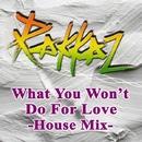 What You Won't Do For Love - House Mix/Rakkaz