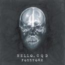 HELLO,C Q D(live ver.)/FoZZtone