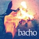 レコンキスタ/bacho