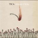 Johnny Cliche/TICA