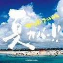 夏カバっ!! -オリジナル フルレングス-/COVERS LABEL