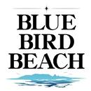 EVERYTHING ~君を愛してた~/BLUE BIRD BEACH
