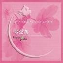 ピアノで綴る さだまさしの世界 琴弦集 Vol.1/Cafe de Masashi