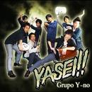YASEI !!/Grupo Y-no
