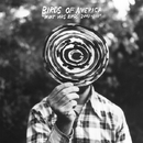 WHAT WAS BIRDS: 2000-2011/BIRDS OF AMERICA