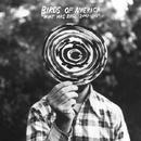 WHAT WAS BIRDS: 2000-2011/BIRDS OF AMERICA